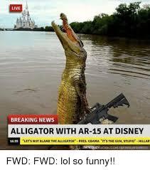 Alligator Meme - live breaking news alligator with ar 15 at disney 1635 let s not