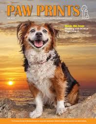 paw prints fall 2016 by humane society of broward county issuu