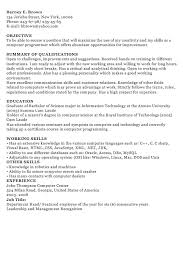 A Sample Of Resume For Job by If You Are A Computer Programmer And Looking For A Sample Of