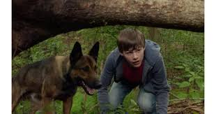 belgian malinois in movies max movie review