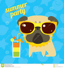 funny pug dog on the summer party with cocktail and sunglsses