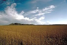 The Interior Plains Climate Prairie The Canadian Encyclopedia