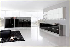 Kitchen Cabinet Chicago Italian Kitchen Cabinets Home Decoration Ideas
