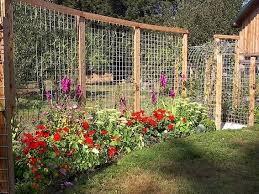 Garden Barrier Ideas Fence For Garden