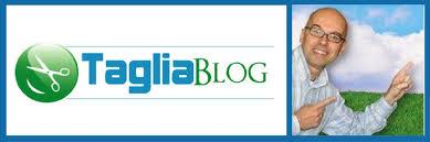 Guadagnare con un blog  l     esperienza di    top blogger italiani Italian Indie Davide Tagliaerbe Pozzi   come guadagnare con un blog