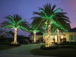 palm tree christmas tree lights professional christmas light installation florida east treasure coast