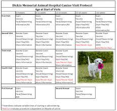 veterinarian vaccinations in johnson city ny dickin memorial