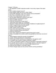 Dna Structure And Replication Worksheet Key Building Dna Answer Key