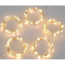lidore micro led 20 green string lights with timer