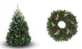 fresh wreath or tree bl trees groupon