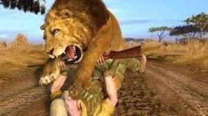 new animals documentary 2015 wildlife animals national geographic