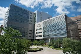 1 Barnes Jewish Hospital Plaza Bjc Institute Of Health Washington University Of Medicine
