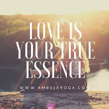 is your true essence ambuja