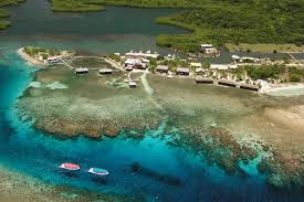 9 top affordable overwater bungalows around the world travel