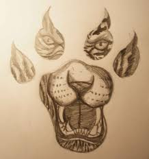 tigers paw tattoo sketch real photo pictures images and