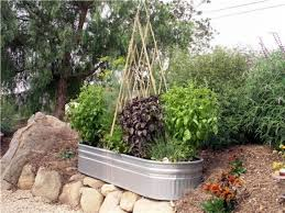 Vegetable Gardening In Pots by Large Container Vegetable Gardening Gardening Ideas
