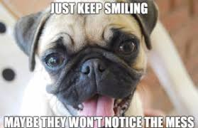 Keep Smiling Meme - pug memes funny collection of happy birthday pug memes