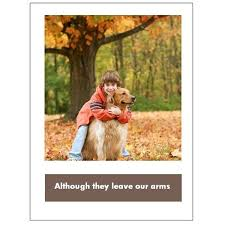 free sympathy cards 5 free pet sympathy cards for microsoft publisher and