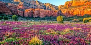 beautiful spring sedona makes thrillist s list of america s 11 most beautiful spring
