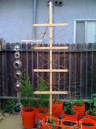 garden trellis design hop trellis kirton brothers brewing amazing trellis design photos