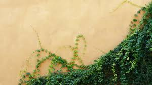 pros and cons of exterior stucco for your home jack krenek