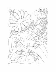 butterflies and insects coloring pages 29 butterflies and