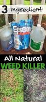 3 ingredient natural weed killer weed killers weed and acre
