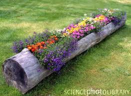 garden design garden design with terrific garden bed ideas photo