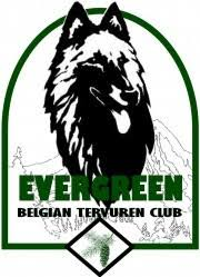 belgian sheepdog club of america national specialty ebtc home page