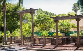 welcome to grande oasis carrollwood tampa apartments