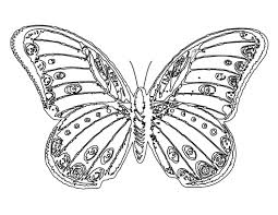 6 images of big butterflies coloring pages for kids printable