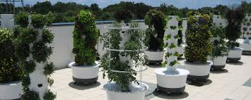 Aeroponic Vertical Garden Q And A The Tower Garden Dr Mitra Ray