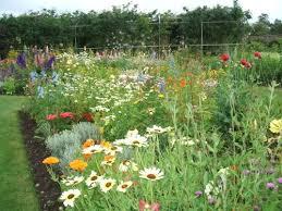 151 best perennial borders images on pinterest beautiful gardens