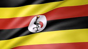Uganda Flag Colours Users