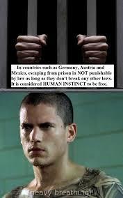 Prison Break Memes - prison break