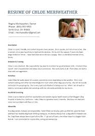 Blank Resume To Fill Out If A Dog Was Filling Out A Resume Resume For Your Job Application