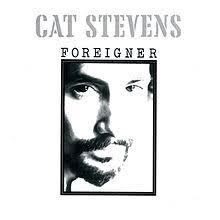 cat photo album foreigner cat album