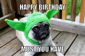 Birthday Pug Meme - 105 ever green dog memes