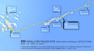 Marathon Florida Map by Florida Keys Hawkwatch Dedicated To Promoting The Appreciation