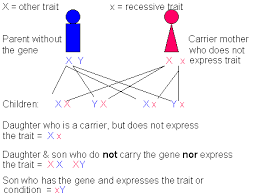 Cause Of Color Blindness X Linked Recessive Red Green Color Blindness Hemophilia A