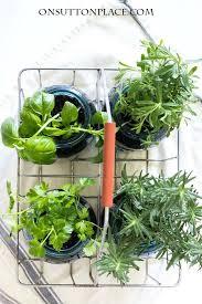 239 best indoor gardening images on pinterest indoor herbs