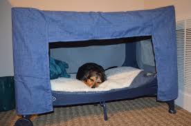 Crib Mattress Dog Bed by Images About Dog Bed On Pinterest Pack N Play Homemade And Beds