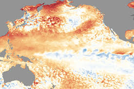 image of what el nino and la actually for australian and
