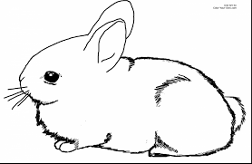 stunning easter bunny coloring with rabbit coloring page