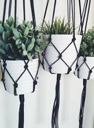 the 25 best hanging plants outdoor ideas on pinterest outdoor