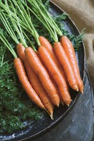 how to store fresh carrots diy