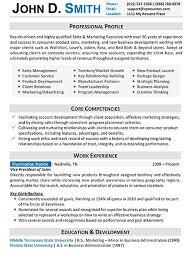 template of professional cv download sample professional resume format designsid com