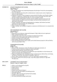 simple format for resume drupalveloper resume exles sle format cv exle