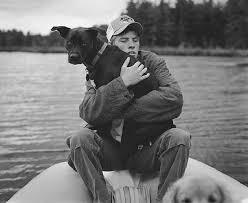 love dogs u2026 kritina knief u0027s photography blog