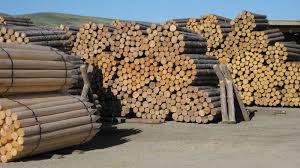 wood supplies pickaroon timber products